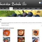 Reference - 06 - Vinotéka Bobule