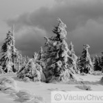 Snežka (2)